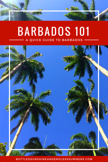 Barbados In A Nutshell: A Quick (And Useful) Guide To Barbados